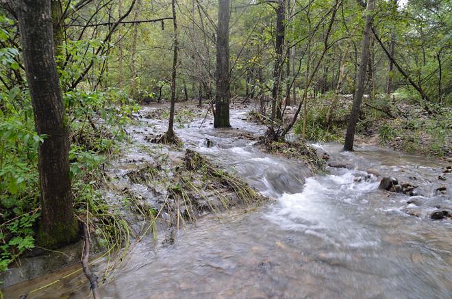 増水した音更川