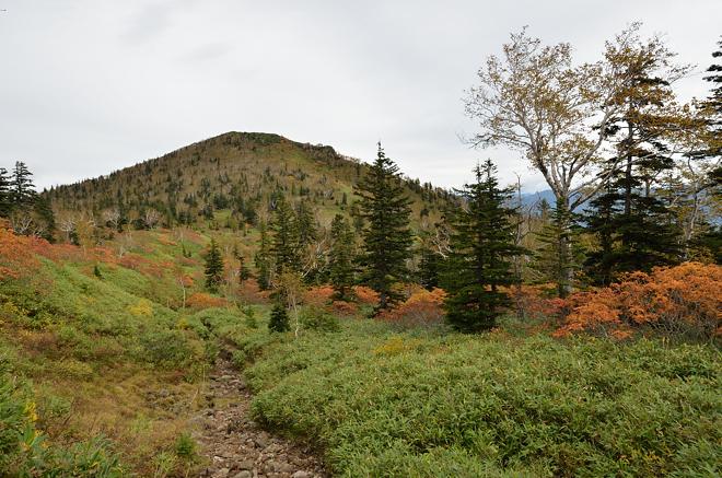 ニペソツ山の風景