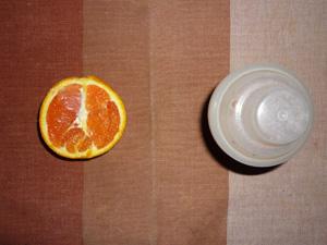 プロテイン,オレンジ