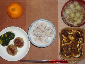 胚芽押麦入り五穀米,茄子とミートソースの焼き物,プチバーグ×2,ほうれん草のソテー,長ネギのもおみそ汁,みかん
