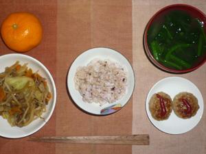 胚芽押麦入り五穀米,キャベツともやしの蒸し野菜,プチバーグ×2,ほうれん草のおみそ汁,みかん