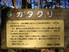 tukuba100117-101