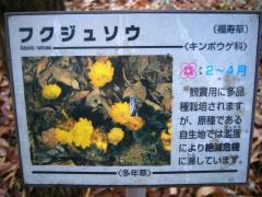 mikamoyama100228-102