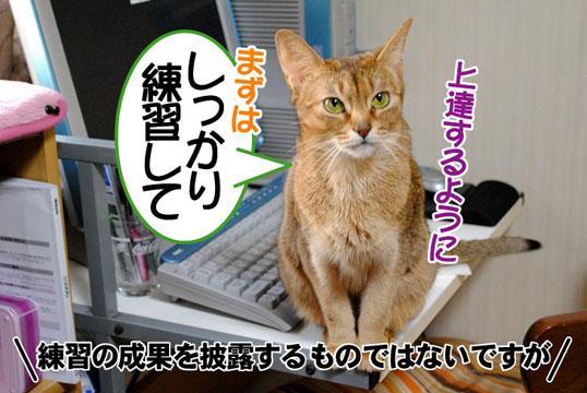 20110314_05.jpg