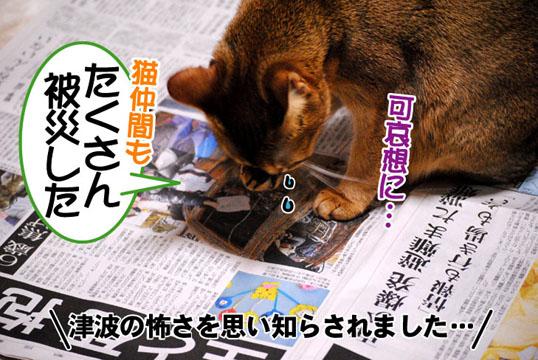 20110315_02.jpg