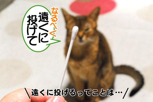 20110410_01.jpg