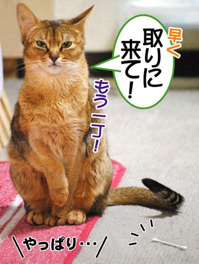 20110410_04.jpg