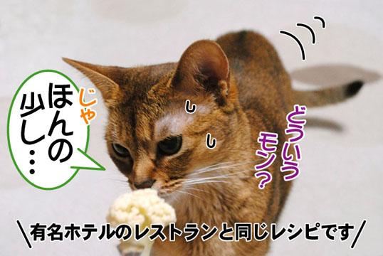20110425_04.jpg