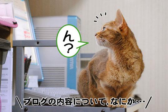 20110426_01.jpg
