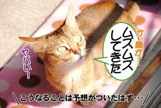 20110429_03.jpg