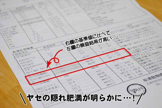 20110511_02.jpg