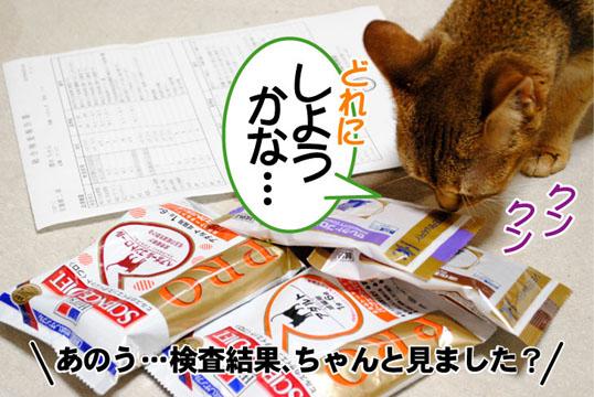 20110511_04.jpg