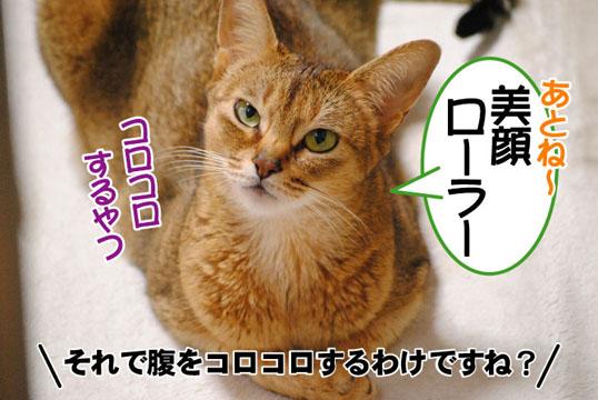 20110516_03.jpg