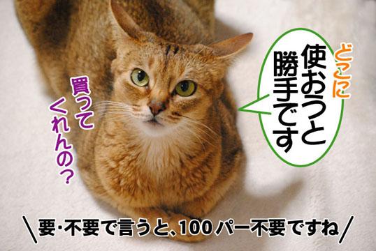 20110516_04.jpg
