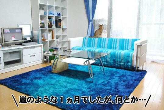 20110602_01.jpg