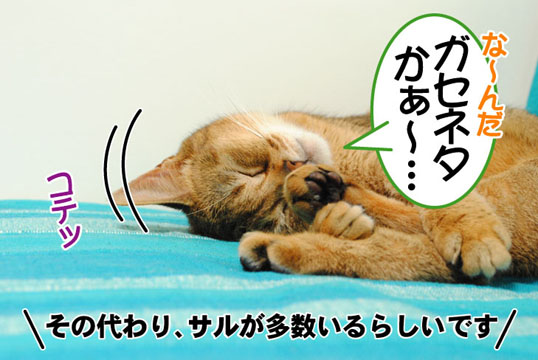 20110605_04.jpg