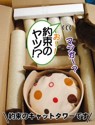 20110608_02.jpg