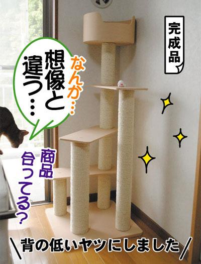 20110608_04.jpg