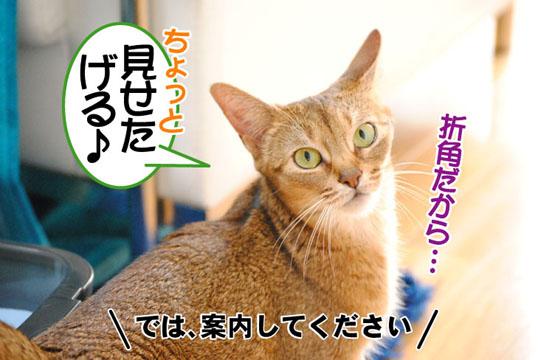 20110611_02.jpg