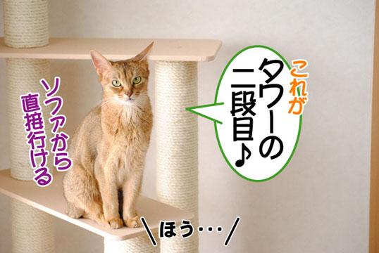 20110611_03.jpg