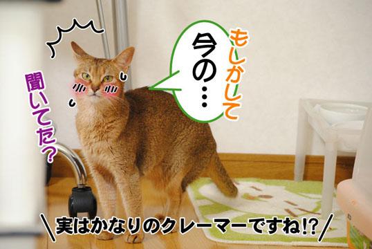 20110615_03.jpg