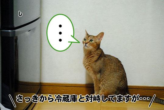 20110702_01.jpg