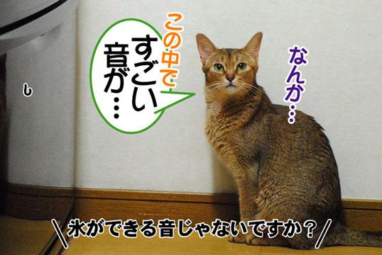 20110702_02.jpg