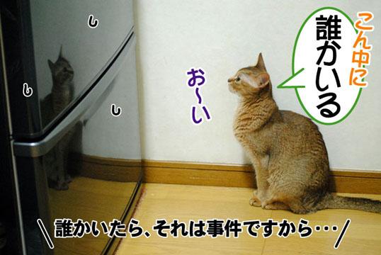 20110702_03.jpg