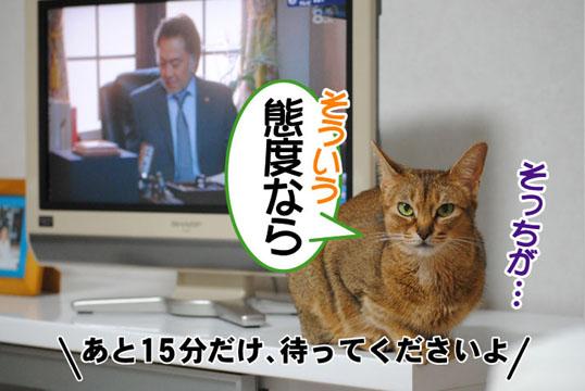 20110705_03.jpg