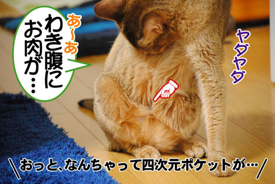 20110707_03.jpg