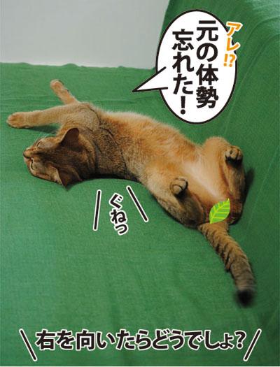 20110712_01.jpg