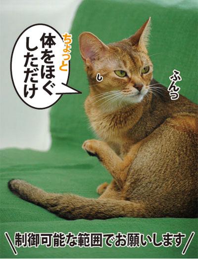 20110712_05.jpg