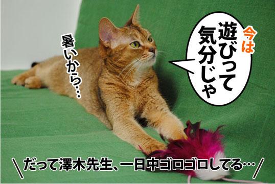 20110713_01.jpg