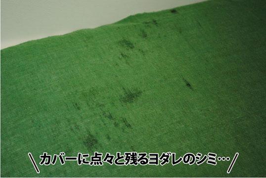 20110715_03.jpg