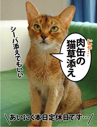 20110716_04.jpg
