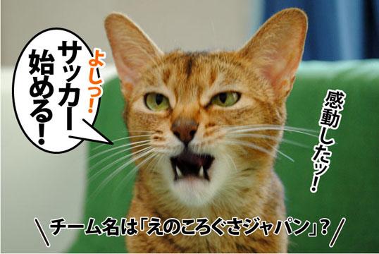 20110718_01.jpg