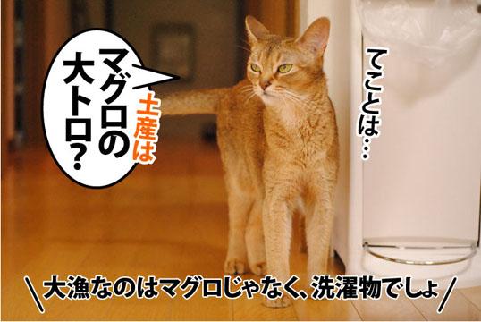 20110720_04.jpg