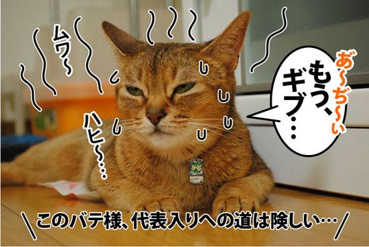 20110721_01.jpg