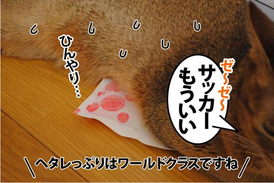 20110721_02.jpg