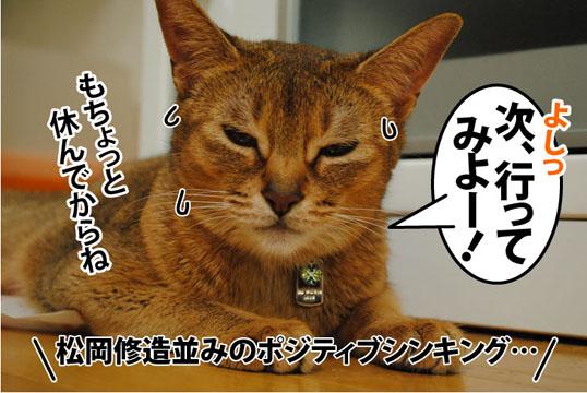20110721_03.jpg