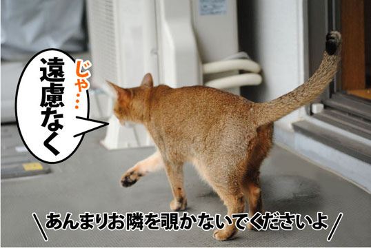 20110722_02.jpg