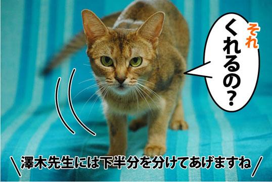 20110729_02.jpg