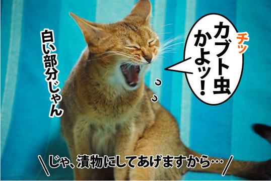 20110729_03.jpg
