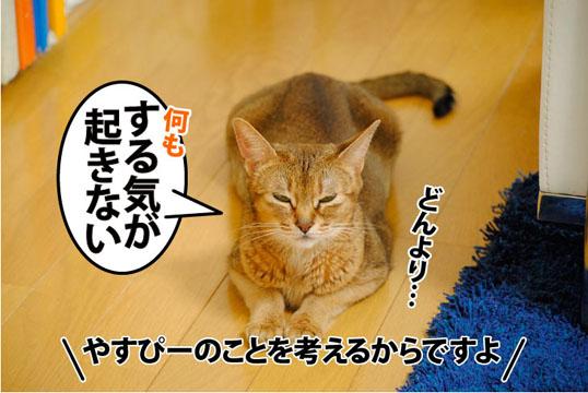 20110801_01.jpg