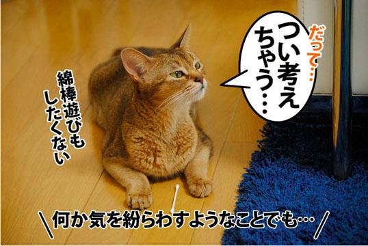 20110801_02.jpg