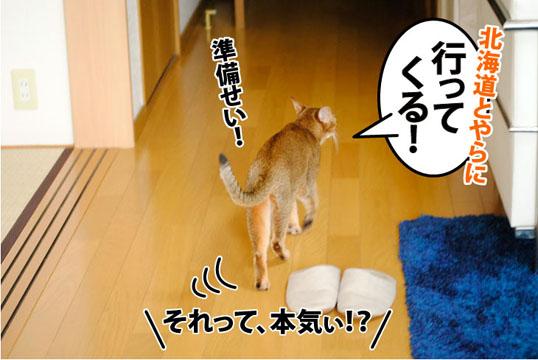 20110801_04.jpg