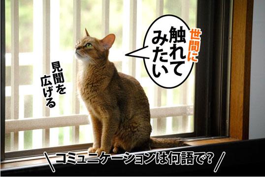 20110802_02.jpg