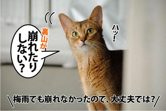 20110806_02.jpg