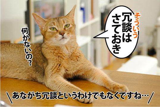 20110810_03.jpg