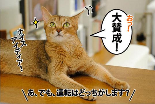 20110810_06.jpg